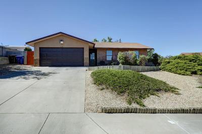 Albuquerque Single Family Home For Sale: 5104 Larkspur Lane NE
