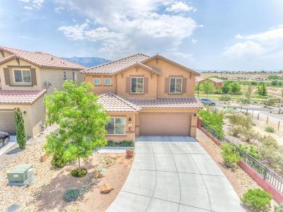 Albuquerque, Rio Rancho Single Family Home For Sale: 102 Las Medanales Court NE