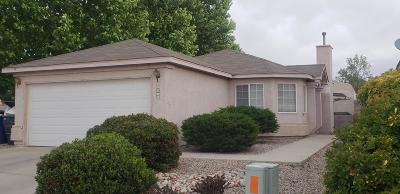 Albuquerque Single Family Home For Sale: 8519 Vista Chamisa Lane SW