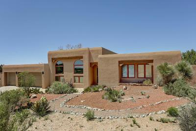 Placitas Single Family Home For Sale: 149 Placitas Trails Road