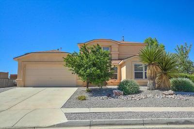 Albuquerque, Rio Rancho Single Family Home For Sale: 4968 Sundance Drive NE