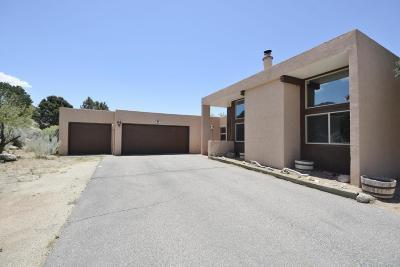 Bernalillo County Single Family Home For Sale: 726 Tramway Vista Loop NE #32
