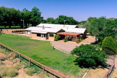 Los Ranchos Single Family Home For Sale: 604 Ortega Road NW