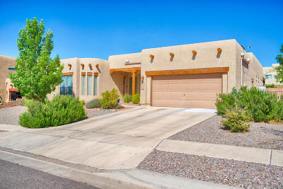 Albuquerque, Rio Rancho Single Family Home For Sale: 1508 Blue Spruce Drive NE