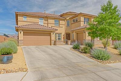 Albuquerque, Rio Rancho Single Family Home For Sale: 36 Los Balcones Place NE