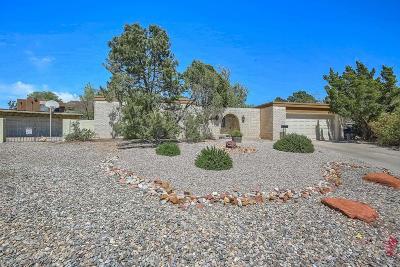 Albuquerque Single Family Home For Sale: 7613 Hendrix Avenue NE