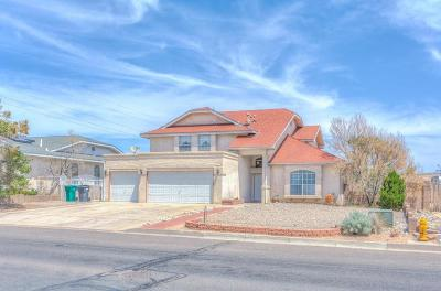 Albuquerque, Rio Rancho Single Family Home For Sale: 2873 Chessman Drive SE
