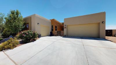 Rio Rancho Single Family Home For Sale: 6102 Pecos Trail Drive NE