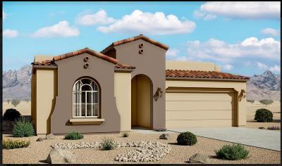 Rio Rancho Single Family Home For Sale: 3630 Kenai Drive NE