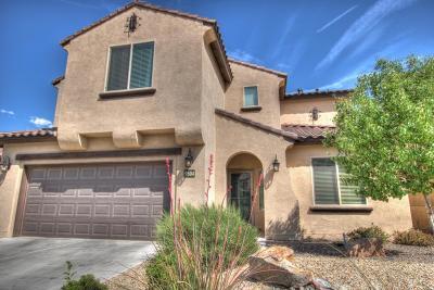 Albuquerque Single Family Home For Sale: 9504 Granite Ridge Drive NW