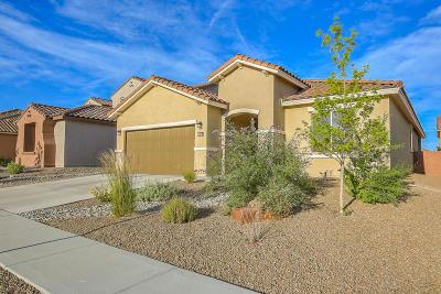 Albuquerque Single Family Home For Sale: 2024 Abo Canyon Drive NW