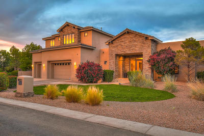 Albuquerque Single Family Home For Sale: 9408 Black Farm Lane NW
