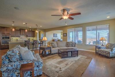 Albuquerque Single Family Home For Sale: 1928 Redondo Peak Drive NW