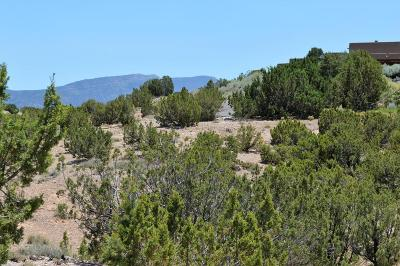Placitas Residential Lots & Land For Sale: Lot 17 Camino Manzano