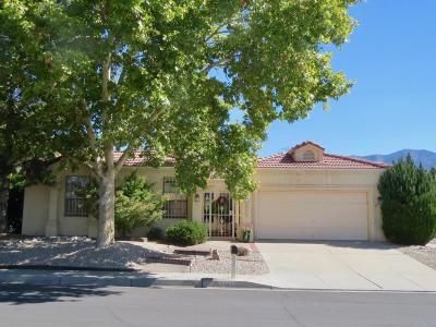 Albuquerque Single Family Home For Sale: 5700 Teakwood Trail NE