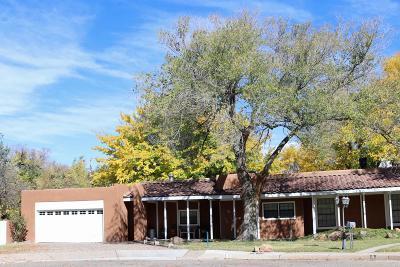 Albuquerque Single Family Home For Sale: 9 Garden Park Circle NW