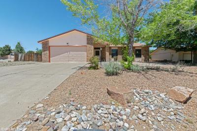Albuquerque, Rio Rancho Single Family Home For Sale: 1058 Cascade Road SE
