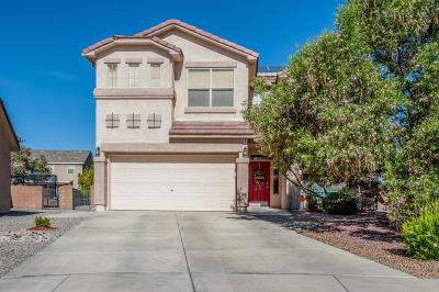 Albuquerque, Rio Rancho Single Family Home For Sale: 1448 Peppoli Loop SE