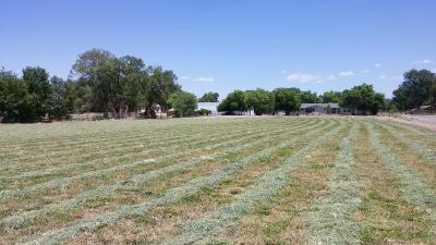 Albuquerque Farm & Ranch For Sale: 2538 Boliver Lane SW