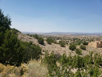 Placitas Residential Lots & Land For Sale: Canoncito Road #51