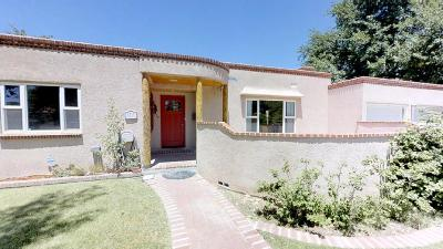 Albuquerque Single Family Home For Sale: 1717 San Cristobal Road SW