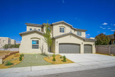 Albuquerque Single Family Home For Sale: 8715 Desert Finch Lane NE