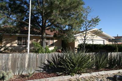 Rio Rancho Single Family Home For Sale: 1750 Brenda Road SE