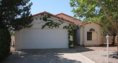Rio Rancho Single Family Home For Sale: 3034 Cochise Circle SE