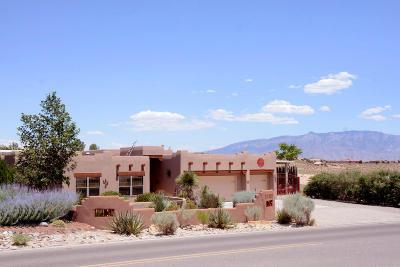 Rio Rancho Single Family Home For Sale: 2537 Chessman Drive NE