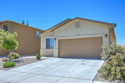 Rio Rancho Single Family Home For Sale: 1040 Jacobs Drive NE