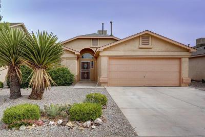 Rio Rancho Single Family Home For Sale: 652 Valley Meadows Drive NE