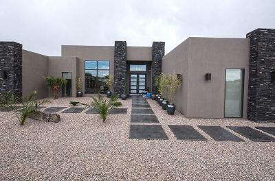 Albuquerque Single Family Home For Sale: 9000 Alameda Boulevard NE