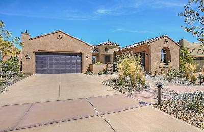Albuquerque Single Family Home For Sale: 2120 Goose Lake Trail NW