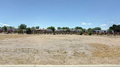 Albuquerque Residential Lots & Land For Sale: 608 Kabrico Court NE