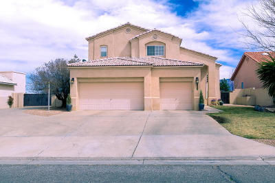 Rio Rancho Single Family Home For Sale: 3569 Newcastle Drive SE