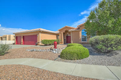 Rio Rancho Single Family Home For Sale: 216 Winged Foot Court SE