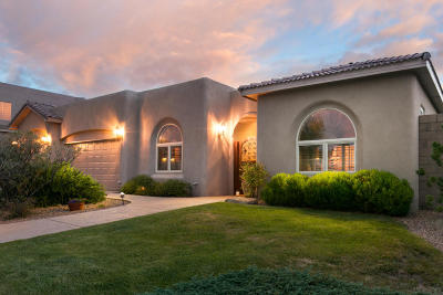 Albuquerque Single Family Home For Sale: 9900 Cardinal Street NW