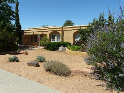 Albuquerque Single Family Home For Sale: 1133 Santa Ana Avenue SE