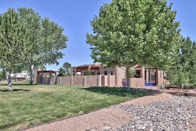 Albuquerque Single Family Home For Sale: 409 Cilantro Lane NW
