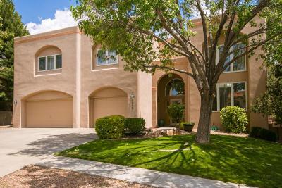 Albuquerque Single Family Home For Sale: 1508 Gray Rock Place NE