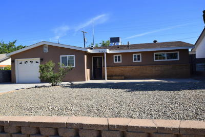 Albuquerque Single Family Home For Sale: 9109 Hendrix Road NE