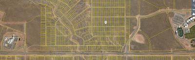 Rio Rancho Residential Lots & Land For Sale: 3809 Macao Road NE