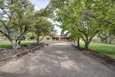 Corrales Single Family Home For Sale: 153 Quirks Lane