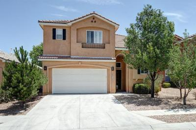 Albuquerque Single Family Home For Sale: 9612 Sun Dancer Drive NW