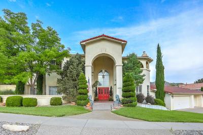 Albuquerque Single Family Home For Sale: 1404 Temile Hill Place NE