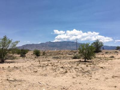 Albuquerque Residential Lots & Land For Sale: 10224 Edith Boulevard NE