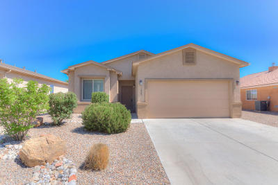Rio Rancho Single Family Home For Sale: 1029 Northern Lights Way NE