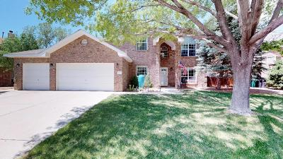 Rio Rancho Single Family Home For Sale: 2813 Island Loop SE