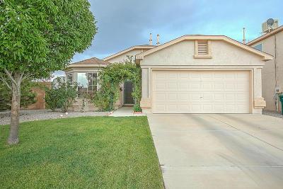Rio Rancho Single Family Home For Sale: 773 Sunny Meadows Drive NE