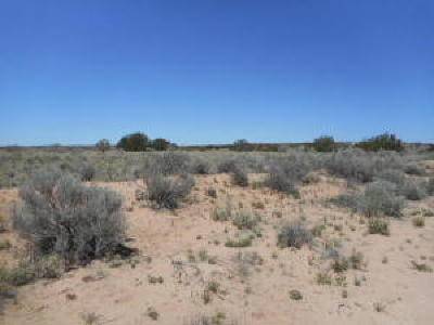 Rio Rancho Residential Lots & Land For Sale: 105 3rd Street NE